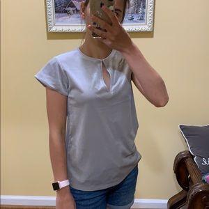 Ann Taylor velvet silver blouse
